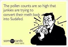 The pollen counts are so high…