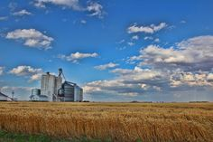 Grain elevators & wheat this is what makes farming worth it ! Kansas Usa, State Of Kansas, Back In Time, Farming, Past, Brick, Landscapes, Clouds, Spaces