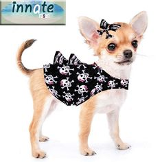 Badass chihuahua outfit  Limited Edition by InnateArtisanSoap on Etsy