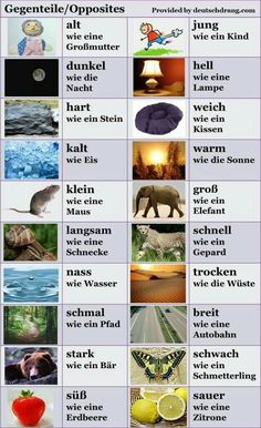 German vocabulary - Opposites and analogies Study German, Learn German, German Grammar, German Words, German Language Learning, Learning Spanish, German Resources, Deutsch Language, Germany Language