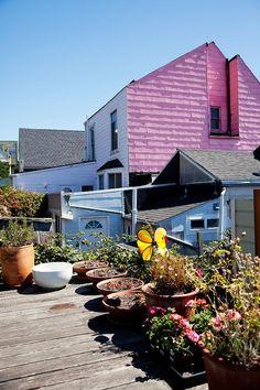 San Fransisco: nice deck