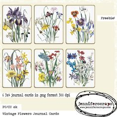 Vintage Flowers Journal Cards - Commercial use Freebie from Jennifer Scraps - drawn flowers filler cards perfect for digital project life Vintage Flowers, Vintage Floral, Free Use Images, Project Life Freebies, Digital Journal, Pocket Scrapbooking, Scrapbook Embellishments, Elements Of Art, Smash Book