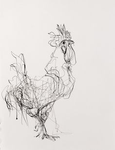 Drawings - Susan Siegel