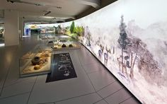 SMAC – State Museum of Archaeology