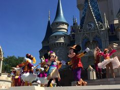 It is impossible to see all the live entertainment at Disney's Magic Kingdom in a single day. You need at least two full days.