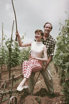 Belgian-born actress Audrey Hepburn ploughing a vineyard with her husband, American actor Mel Ferrer , Italy, circa Get premium, high resolution news photos at Getty Images Gregory Peck, Hollywood Couples, Celebrity Couples, Classic Hollywood, Old Hollywood, Hollywood Actresses, Style Audrey Hepburn, Audrey Hepburn Fashion, Divas