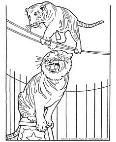 circus tiger coloring page tiger on tight rope
