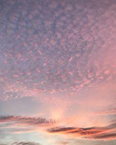 "172 Likes, 11 Comments - The Caffeinated Kuza (@mikaylakristenkim) on Instagram: ""🦄 skies"""