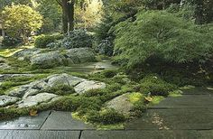Rock Garden Inspiration #containergardeningforbeginners