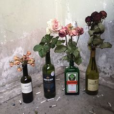 Uploaded by spicycoffee. Find images and videos about aesthetic, flowers and rose on We Heart It - the app to get lost in what you love. My New Room, My Room, Arte Punk, Alaska Young, Aesthetic Rooms, Aesthetic Dark, Aesthetic Pics, In Vino Veritas, Retro