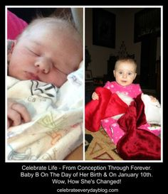 Celebrate Life - From Conception On . . .
