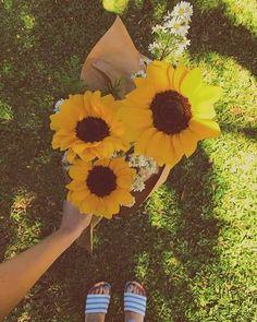 Diy Flowers, Yellow Flowers, Beautiful Flowers, Sunflower Iphone Wallpaper, Smell Of Rain, Fruit Photography, Flower Shower, Sunflower Fields, Flower Aesthetic