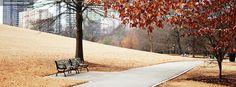 Autumn In The Park HD desktop wallpaper : High Definition : Fullscreen : Mobile : Dual Monitor