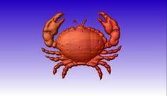 Crab 3D Vector Art