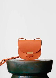 thechicdepartment: Celine // Orange Trotteur Bag
