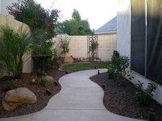 Curvy sidewalk with mounding and plants dress up a boring side yard in Chandler Arizona.