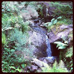 Waterfall, Gougane Barra, Co. Cork