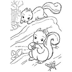 Top 25 Free Printable Squirrel Coloring Pages Online Squirrel Coloring Page Animal Coloring Pages Tree Coloring Page