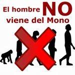 EDUpunto.com: El hombre NO viene del mono