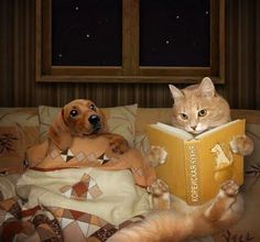 Hehe, the cat doesn't look too thrilled with the book. Favourite character must've died.