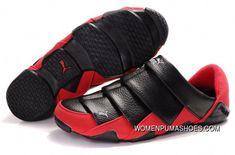 ace8047e8 18 Sensational Sports Shoes For Women Sports Shoe For Women On Sale   shoebox  shoestore