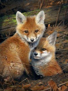 "(4) Uživatel Vivi na Twitteru: ""❤ -- VERY SWEET , ADORABLE DIVINE DARLINGS. Nature Animals, Woodland Animals, Animals And Pets, Wild Animals, Cute Baby Animals, Funny Animals, Fuchs Baby, Fox Pictures, Pet Fox"