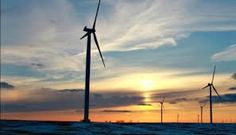 Cheaper renewables to halt coal and oil demand growth from 2020 -research