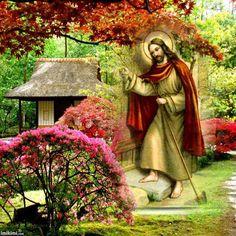 """""""Jesus quer um lugar de consolação e de repouso nos nossos santuários, nas nossas casas, nos nossos corações. Para tanto é necessário que reinem entre nós, com a vida interior, a paz e o recolhimento."""" (Padre Dehon)"""