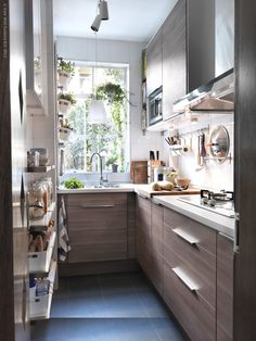 small kitchen with hanging plants at the windows and open shelves