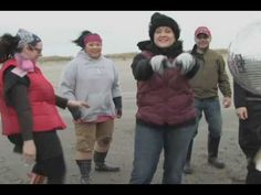 Try Razor Clam digging!  Here's a video of Chef Kathy Casey digging clams in Ocean Shores.