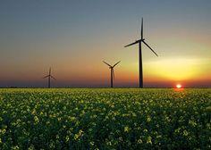 Se esperan incrementos de adquisiciones estratégicas en el sector de las renovables