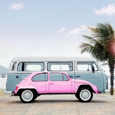 #volkswagonvintagecars #volkswagenvintagecars #volkswagonclassiccars