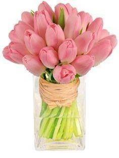 Pink tulips,,,Beautiful