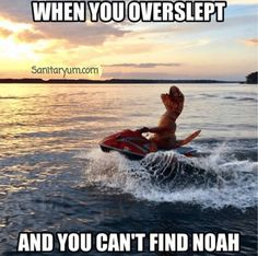 When you overslept and you can't find Noah | Christian Funny Pictures - A time to laugh