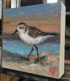"""Western Sandpiper"" original fine art by Krista Eaton Art And Illustration, Bird Artwork, Spring Painting, Tropical Art, Small Art, Wildlife Art, Beach Art, Art Projects, Fine Art"