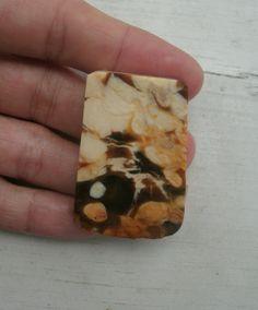 Petrified Opalized Peanut Wood  Austrailian by KrystalKlarityBeads