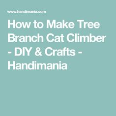 How to Make Tree Branch Cat Climber - DIY & Crafts - Handimania