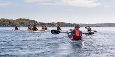 Björnö international tour Boat, Tours, Adventure, Summer, Dinghy, Summer Time, Summer Recipes, Boats, Adventure Game