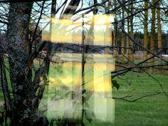 Satu Ylävaara Portfolio : Kesämökin rauha. Mutta talvi tuloo?