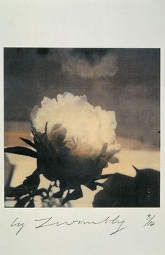 Untitled (peonies), 1980, by Cy Twombly
