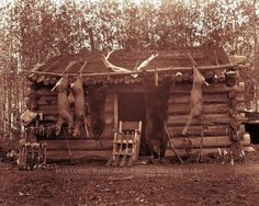 1890 Alaska...Hunters cabin showing all his hunting gear. https://www.pinterest.com/pamshriver/1800s-1900s/