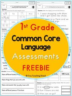 Free 1st grade Common Core Language Assessments