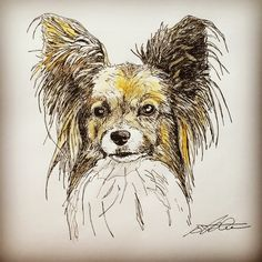 #happybirthday #kingbee2015 #dog #art #agility #draw #drawing #doglover #paint #pen #peace #painting #peaceful #family #friend #facebook #sweet #sketch #papillon #gift #watercolor #illustrate #illustrating
