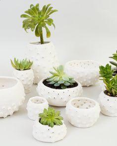 Ceramic Sea Urchin Modern Ceramic Planter~ Spiky Ceramics Tactile Porcelain Planter Pot~ White Ceramic Bowl Pottery Ring Dish ~ Brighton UK