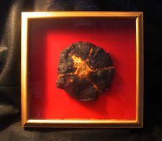 The Burnt Food Museum, virtual museum