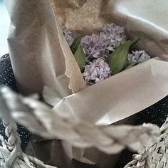 Mam nadzieję,  że nie zmarły,  bo okropnie dziś zimno. #weekend #naszdom #flowers #basket