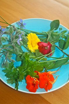 Cooking with flowers: Fresh pasta with flowers and herbs