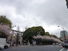 """Yasukuni-Jinja""(Sacrario), Tokyo Japan"