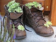 schuhe-bepflanzen-ideen-sukkulenten-deko-garten-