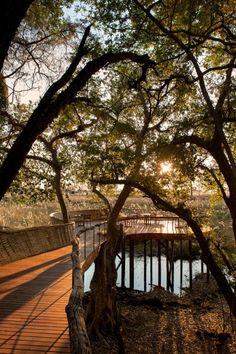 Seit September 2014 können betuchte Botswana-Urlauber im Okavango-Delta in der neugestalteten Sandibe Safari Lodge den Staub der Wildnis abschütteln.